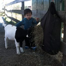 Sam and a goat
