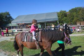 Stella riding a horse