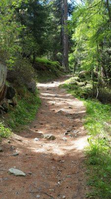 Arvenweg Trail from Riffelalp
