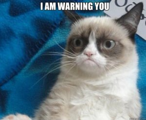 Grumpy Cat Warning