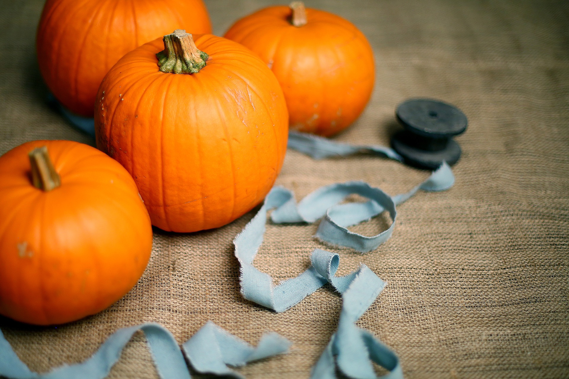 10 Quick and Easy Outdoor Halloween Decorations