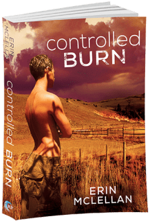 3D Cover of Controlled Burn