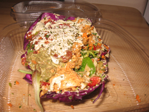 Steves purple burrito from the raw food restaurant