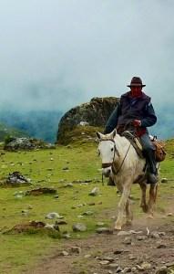 Man on Horse, photo by Matt Lee