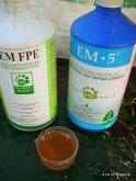 EM Fermante edilmiş ürün + EM5