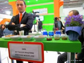 İzmir Zeytincilik araştırma