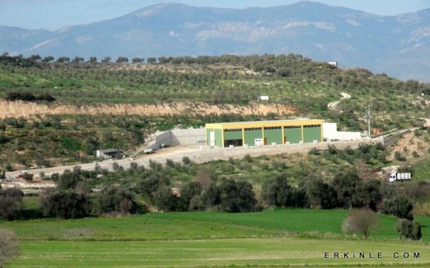 ZeytinSeli zeytinyağ fabrikası