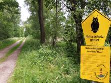 Wanderweg durchs Naturschutzgebiet Henstedter Moor
