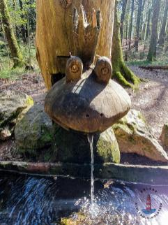 Wanderweg Mönkloh Waldlehrpfad Hasselbusch Quelle
