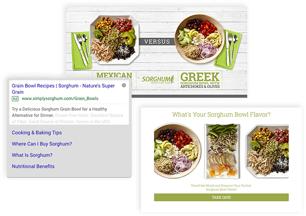 sorghum seo bundle