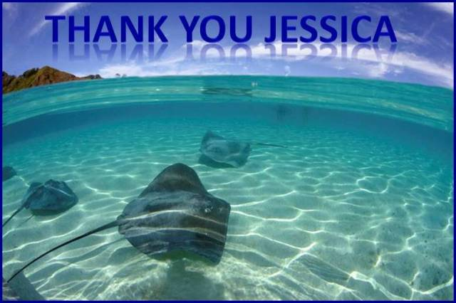2016 01 07 Thank You for Jessica Ernst upcoming Supreme Court of Canada hearing, Ernst vs AER