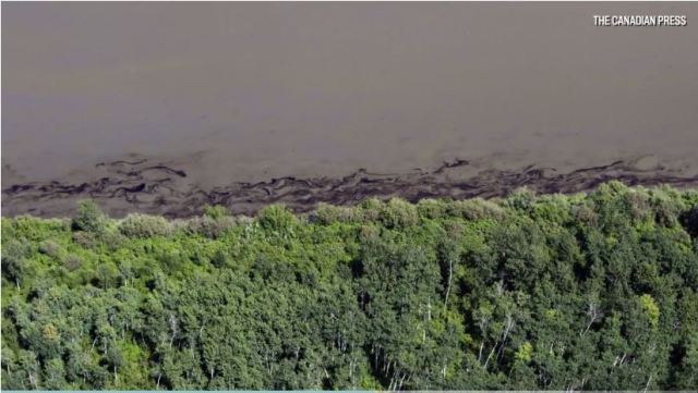 2016 07 Husky bitumen spill in North Saskatchewan River