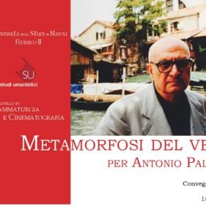 Metamorfosi del vero. Per Antonio Palermo