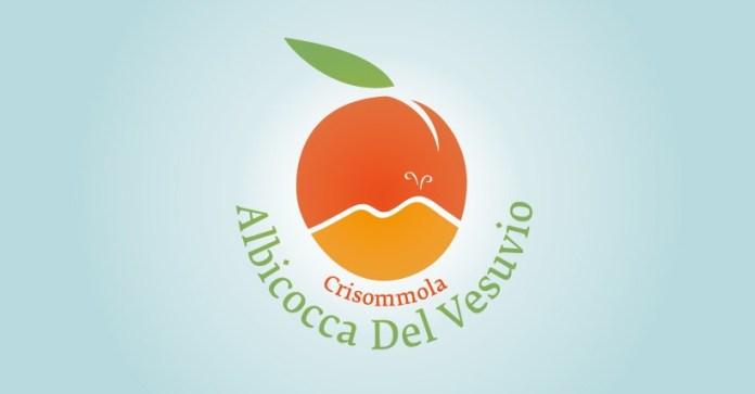 Presidio Slow Food delle Albicocche del Vesuvio