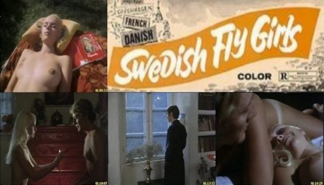 Swedish Fly Girls (1971) watch online