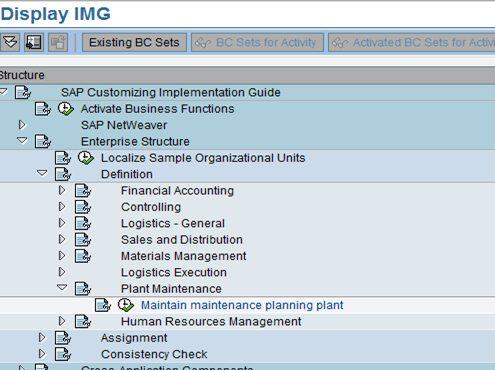 Plant Customization in SAP