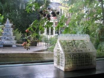 mini greenhouse - mini serre - talee, piante e semine indoor - R nel bosco - phoenix 2