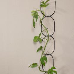 Black support for climbing plants - per piante rampicanti - R nel bosco