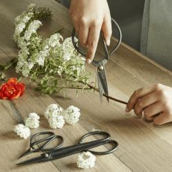 forbici da bonsai - garden shears - giardinaggio - R nel bosco