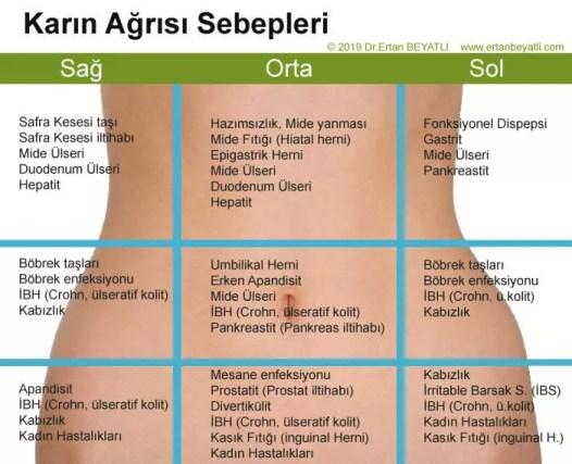 Anatomik bölgelere göre karın ağrısının sık görülen nedenleri. © 2019 Dr.Ertan BEYATLI