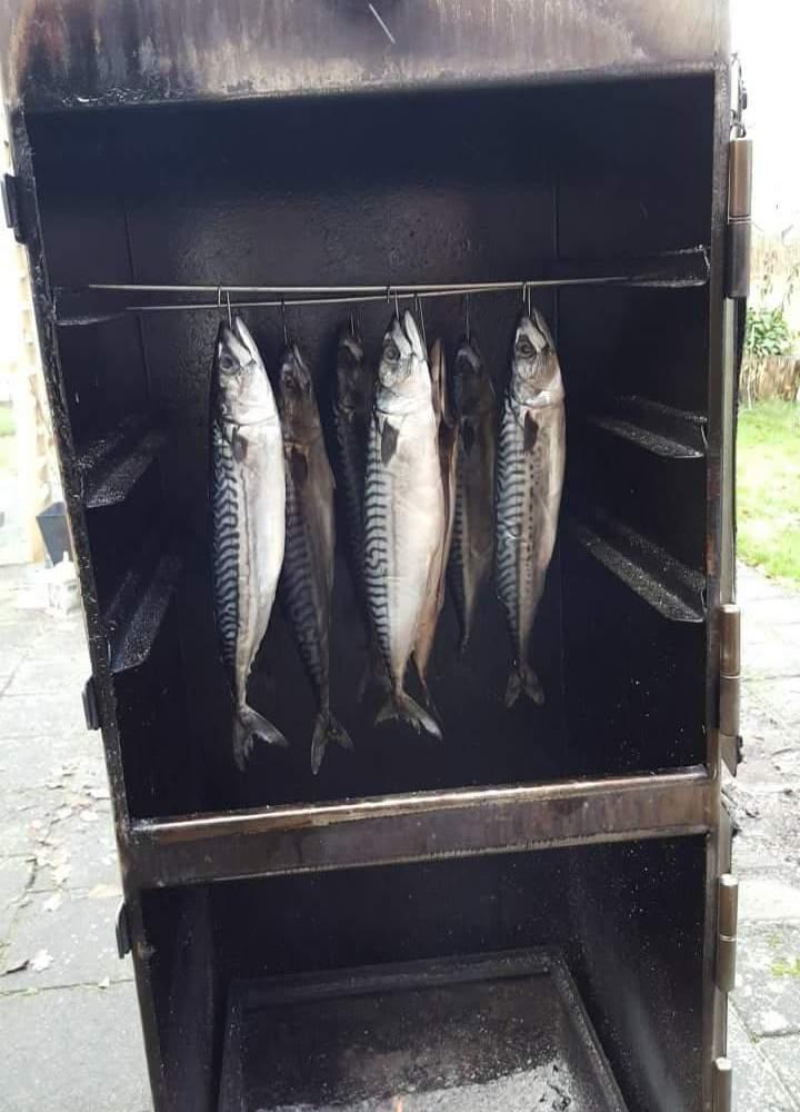 Nog één keer dit seizoen: paling en makreel roken