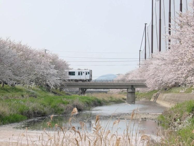 Fukuoka Tourist City Pass