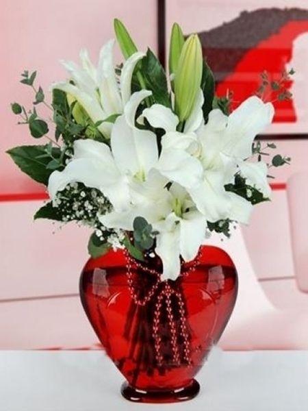 lilyum vazo çiçeği