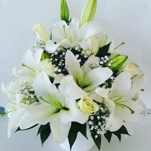 beyaz büyü lilyum