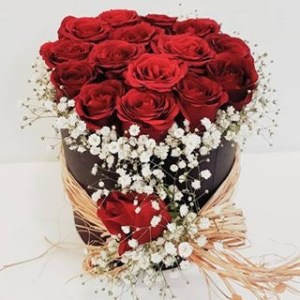 güller kutuda