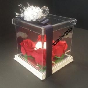 şefaf kutu içinde güller