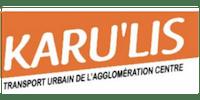 Logo Karulis