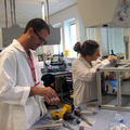 Preparing experiment