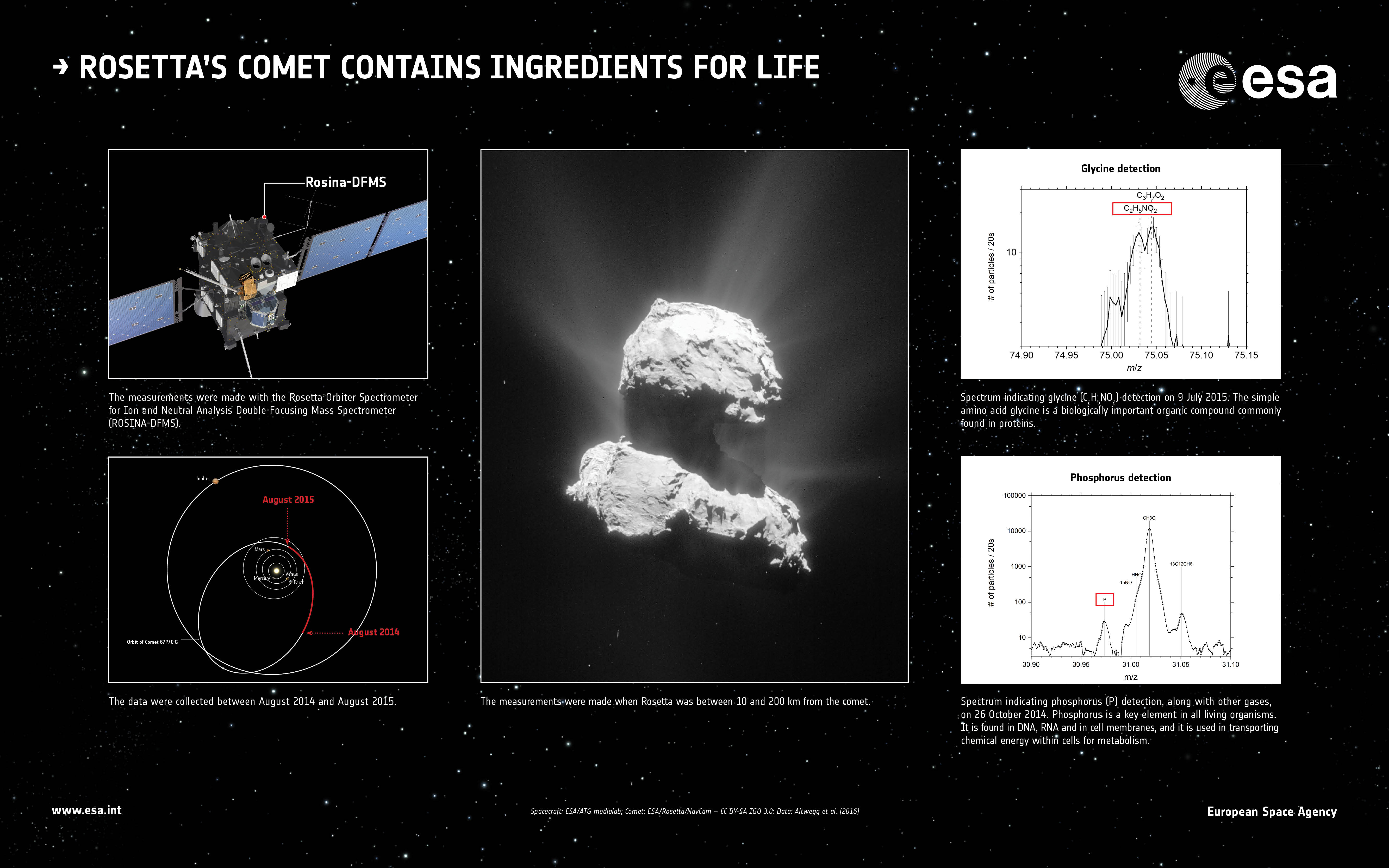 The Rosina-DFMS instrument on Rosetta has detected ingredients considered important for life as we know it on Earth, in the coma of Comet 67P/Churyumov–Gerasimenko.