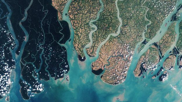 Sundarbans_web_large.jpg
