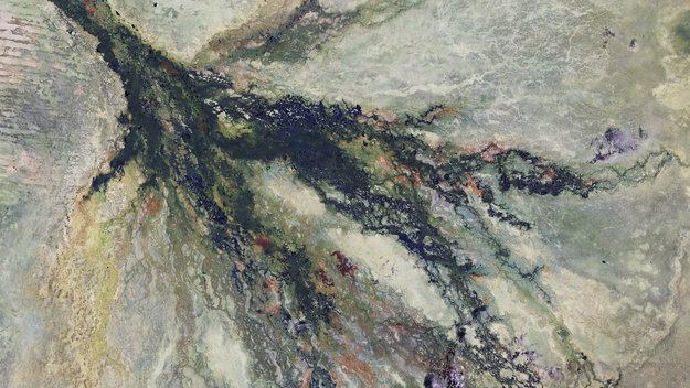 Botswana_wetlands_large.jpg