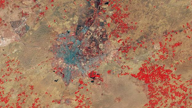 Thar_Desert_India_large.jpg