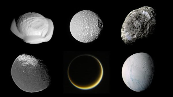 Space in Images - 2017 - 09 - Saturn's moon zoo