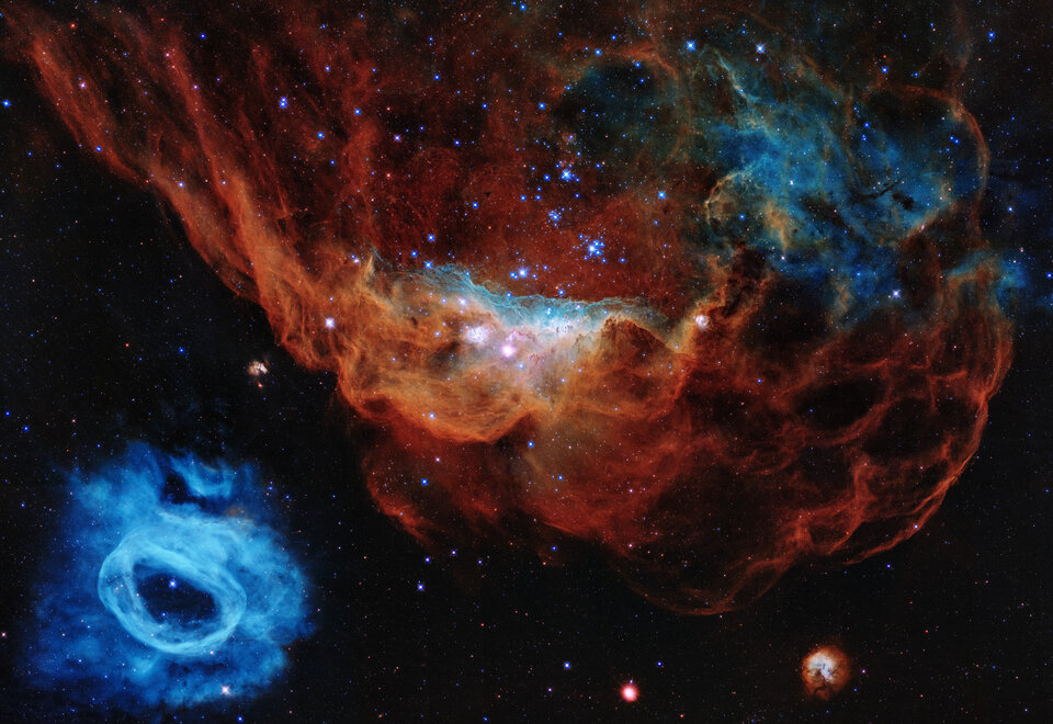 The giant star-forming nebula NGC 2014, taking centre stage in Hubble's 30th anniversary image, and its neighbour NGC 2020 in the lower left corner.