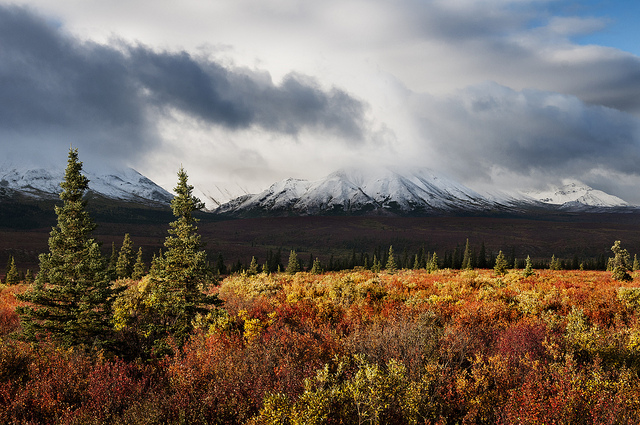 Field Talk Changing climate  changing landscape  monitoring the vast wilderness of interior  Alaska