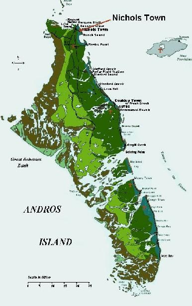 andros1