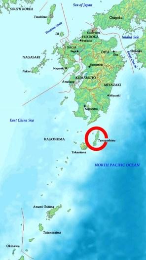 Tanegashima4