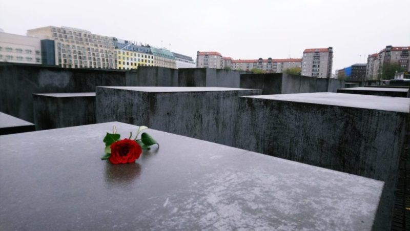 Rosa sobre bloque del Memorial para recordar a los Judíos