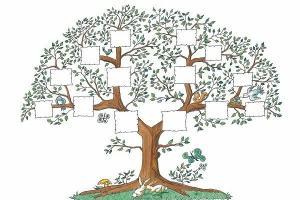 O que significa genealogia? Veja o que a Bíblia ensina sobre isso