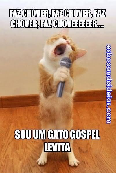 Gato gospel levita