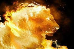O que significa Leão de Judá? Aprenda em nosso estudo