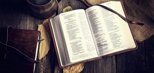 Quais os segredos para ler e entender a Bíblia todos os dias?