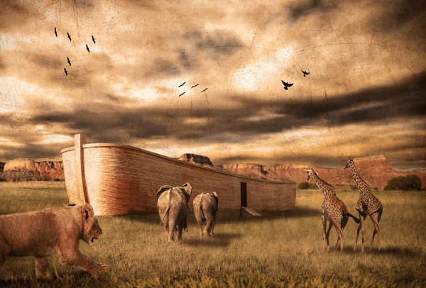 Quantos animais entraram na arca de Noé? Tinha espaço para todos?
