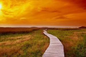 Como fazer propósito com Deus de acordo com a Bíblia?