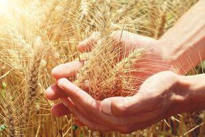 Pentecostes: O que significa na Bíblia? Entenda de forma simples