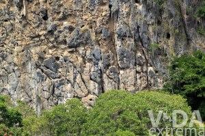 Competencia de escalada Festival Roca Caripe